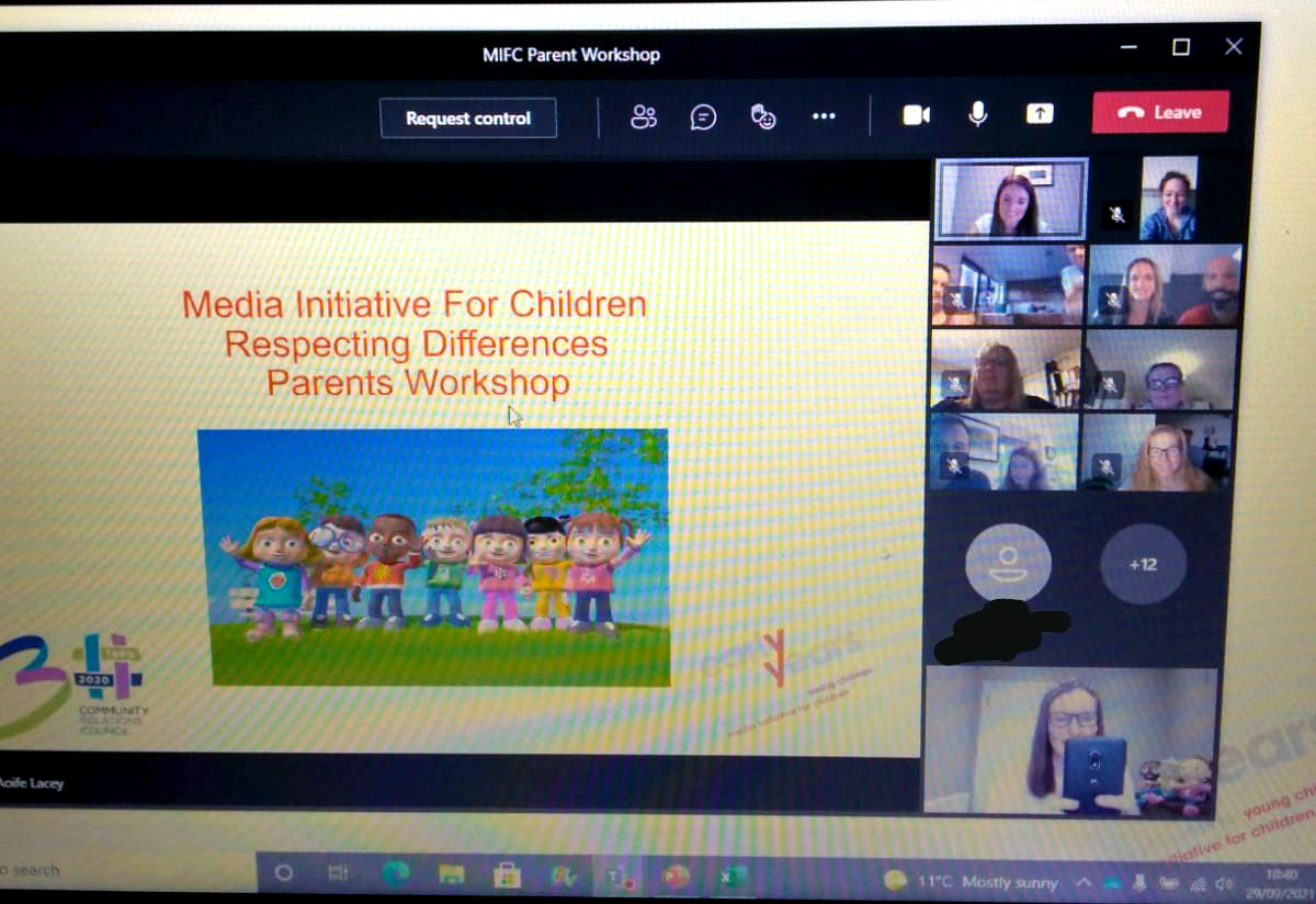 A screenshot of the online meeting | NICRC